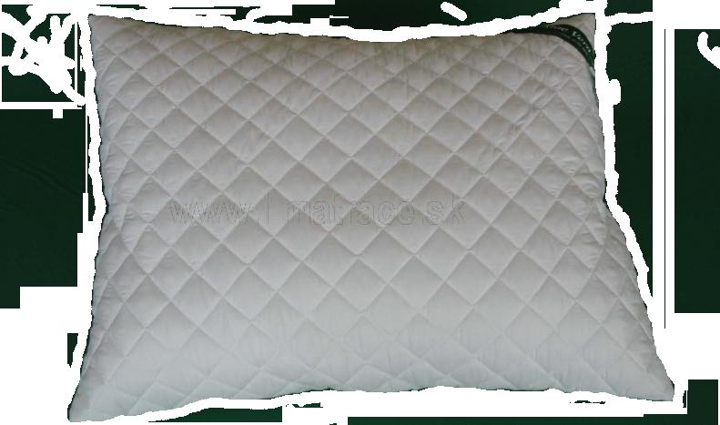 Polštář Aloe Vera